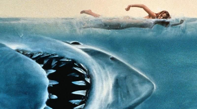 copertina lo squalo